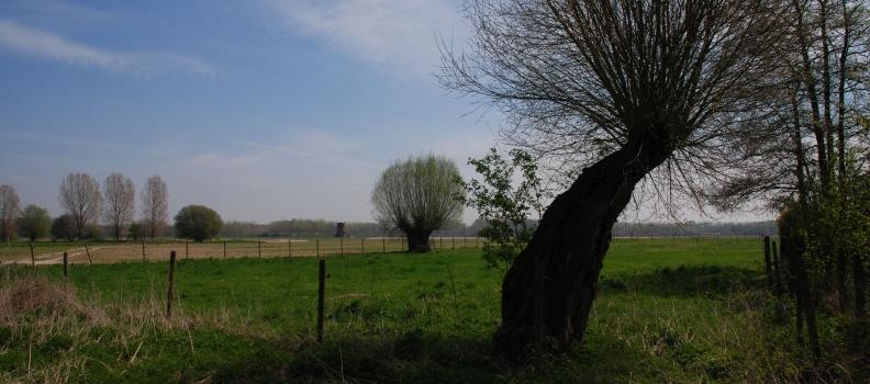 Parc naturel transfrontalier du Hainaut : agissez pour façonner le territoire de demain !
