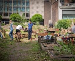 Charleroi Ville Fertile : la solidarité comme terreau pour l'agriculture urbaine et l'alimentation durable