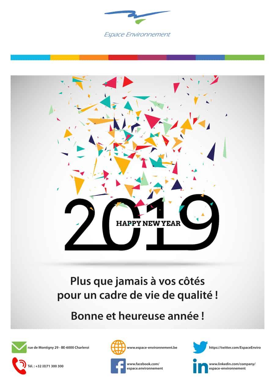 Voeux_2019