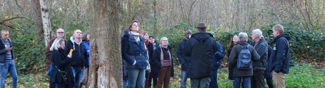 Projet Interreg Va : Destination Terrils : Constitution d'un comité d'orientation pour accompagner la stratégie touristique du projet