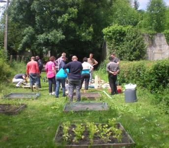 SANISOL : Détermination des teneurs limites en polluant dans le sol en vue d'assurer la qualité commerciale des productions végétales en Wallonie et la gestion des risques pour les producteurs