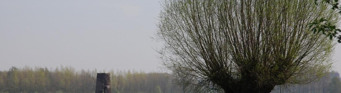 Création des chartes paysagères des Parcs naturels.  La Maison de l'urbanisme du Hainaut soutient les actions participatives