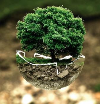 Participez au rassemblement « Ici pour la Terre » et fêtez 10 ans de Développement durable à la Province du Luxembourg